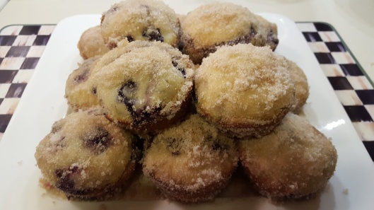 blueberry-muffin-cakes-5
